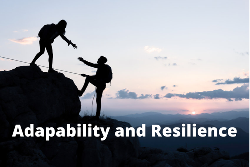 Adaptability and Resilience